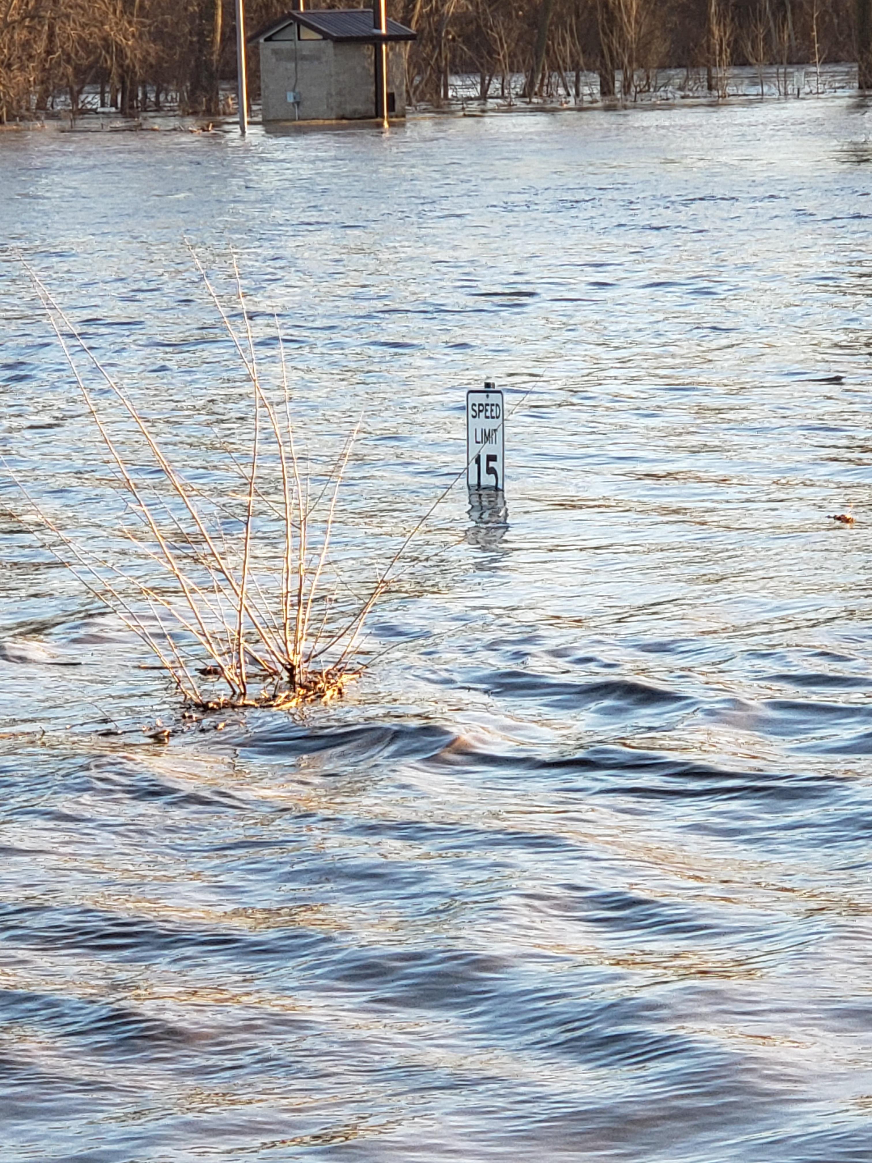 Waterloo Flooding